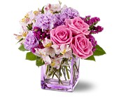 Teleflora's Beautiful Day in Watertown NY, Sherwood Florist