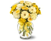 Sweet Sunshine in Staten Island NY, Eltingville Florist Inc.
