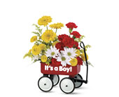 Teleflora's Special Delivery Bouquet in Utica NY, Chester's Flower Shop And Greenhouses