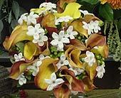Wedding in West Hartford, Connecticut, Lane & Lenge Florists, Inc