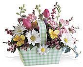 Milan Flowers - Gingham Daisy Basket - Annabelle's Treasures, Flowers & Gifts