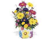 Chicago Flowers - Splash of Spring - Nancy Sell's Flowers