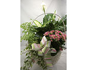 Planter Basket in Lower Gwynedd, Pennsylvania, Valleygreen Flowers and Gifts