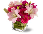 Teleflora's Posh Pinks in Berkeley Heights NJ, Hall's Florist