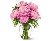 Peonies in Pink in Nashville, Tennessee, Flower Express