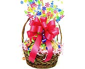 COOKIE4 ''Flower Power'' Cookie Basket in Oklahoma City OK, Array of Flowers & Gifts