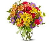Make a Wish in Flower Delivery Express MI, Flower Delivery Express