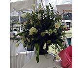 Wedding - LH01