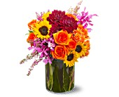 Santa Monica Flowers - Summer Salsa - Edelweiss Flower Boutique