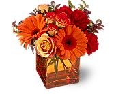 Teleflora's Sunrise Sunset in Kalispell MT, Woodland Floral & Gifts