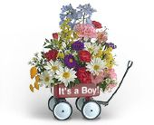 Baby's First Wagon (Boy) in Nationwide MI, Wesley Berry Florist, Inc.