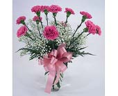 Dozen Pink Carnations in Indianapolis IN, Gillespie Florists