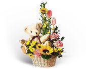 Basket of Bear with Blooms in Seattle WA, Hansen's Florist