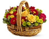 Bundle of Sunshine in Bound Brook NJ, America's Florist & Gifts