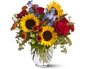 Sunny Skies in Lawrence KS, Englewood Florist