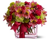 Teleflora's Cheers To You in Aston PA, Minutella's Florist