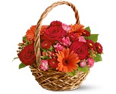 Send Get Well Flowers by Mainstreet Flower Market to Parker, CO or nationwide