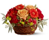 Warm Your Heart in Watertown NY, Sherwood Florist