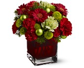 Teleflora's No�l Chic in Edmonton AB, Petals For Less Ltd.