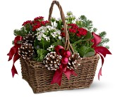 Christmas Garden Basket in Georgina ON, Keswick Flowers & Gifts