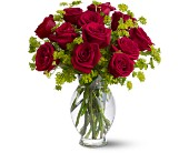 Teleflora's Dozen Sweet Roses in Forest Hills NY, Danas Flower Shop