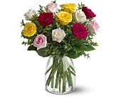 A Dozen Mixed Roses in Charlotte NC, Starclaire House Of Flowers Florist