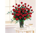 Three Dozen Red Roses in Dallas TX, In Bloom Flowers, Gifts and More
