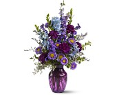 Purple Majesty in London ON, Lovebird Flowers Inc