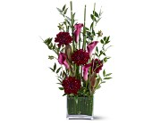 Teleflora's Callas in the Grass in Maple ON, Jennifer's Flowers & Gifts