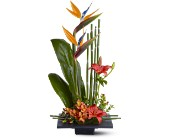 Send Get Well Flowers by Artistry in Flowers to Brooklyn, NY or nationwide