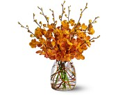 Orchid Embers in Bend OR, All Occasion Flowers & Gifts
