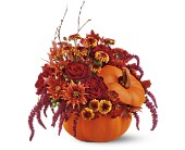 Teleflora's Bewitching Pumpkin Bouquet in Bossier City LA, Lisa's Flowers & Gifts