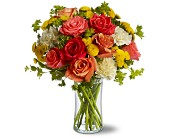 Vienna Flowers - Citrus Kissed - MyFlorist