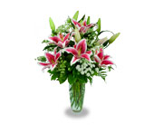 Clearfield Flowers - Simply Stargazers - Jimmy's Flower Shop, Inc.