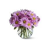 Delightfully Daisy in Nationwide MI, Wesley Berry Florist, Inc.