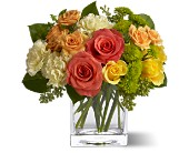 Teleflora's Citrus Splash in Reston VA, Reston Floral Design