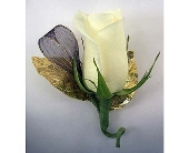 Single Rose Boutonniere - White in Indianapolis IN, Gillespie Florists