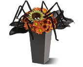 Spooktacular Spider in Edmonton AB, Petals For Less Ltd.