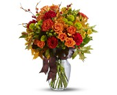 Nature's Wonder in Charlotte NC, Starclaire House Of Flowers Florist