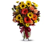 Teleflora's Glorious Autumn in Edmonton AB, Petals For Less Ltd.