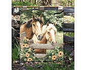 Horse Sense Wall Hanging in Nashville TN, The Bellevue Florist