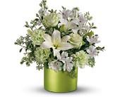 Teleflora's Sea Spray Bouquet in Dubuque IA, New White Florist