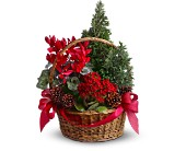 Tannenbaum Basket in Chicago IL, La Salle Flowers