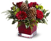 Teleflora's Cozy Christmas in Norwich NY, Pires Flower Basket, Inc.