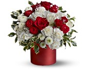 Teleflora's Haute Holiday in Cambria Heights NY, Flowers by Marilyn, Inc.