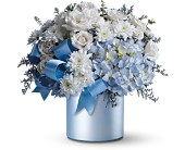 Teleflora's Baby Blue in Massillon OH, Flowers by Pat LLC
