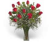 Precious Roses in Greensboro NC, Send Your Love Florist & Gifts