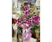 Orchids & Butterfly in Hialeah FL, Bella-Flor-Flowers