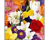 Designer's Choice Bouquet -sm