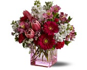 Teleflora's Heartsongs in Charleston SC, Bird's Nest Florist & Gifts
